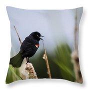 Red Winged Blackbird Singing Throw Pillow