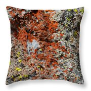 Red With Green Throw Pillow