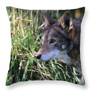 Red Wolf On The Hunt Throw Pillow