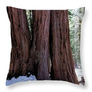 Red Wood Tree Throw Pillow