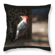 Redbellied Woodpecker Throw Pillow