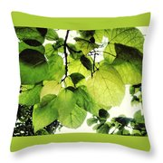 Catalpa Branch Throw Pillow