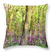Redbud Cercis Canadensis Trees Throw Pillow