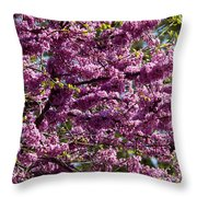 Redbud Tree In Blossom Throw Pillow