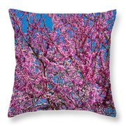 Redbud Tree With Dense Blossoms Throw Pillow