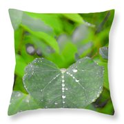 Redbud Water Droplets Throw Pillow