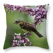 Redbud With Grosbeak Throw Pillow