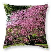 Redbuds In Action Throw Pillow