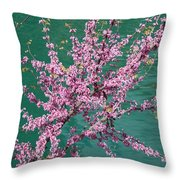 Redbuds Over San Antonio River Throw Pillow