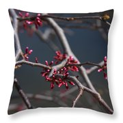 Redbuds Ready To Pop Throw Pillow