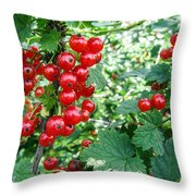 Redcurrant Berries Throw Pillow
