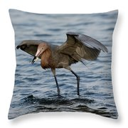 Reddish Egret Egretta Rufescens Throw Pillow