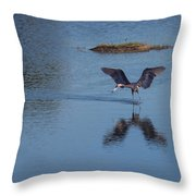 Reddish Egret Looking For Lunch Throw Pillow