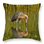 Reddish Egret Reflection Throw Pillow