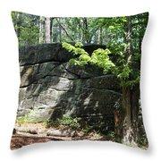 Redemption Rock Princeton Massachusetts Throw Pillow