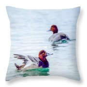 Redhead Ducks Throw Pillow