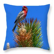 Redheaded Tree Topper Throw Pillow