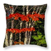 Reds And Greens Throw Pillow