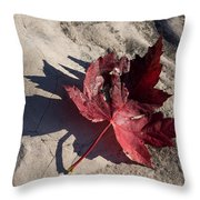 Reds And Purples - Deep Red Maple Leaf And Its Shadow Throw Pillow