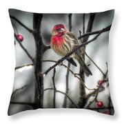 Reds Of Winter Throw Pillow