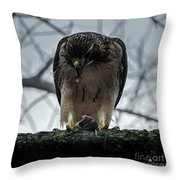 Redtail Hawk And Mouse Throw Pillow