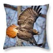 Redtail Hawk Square Throw Pillow by Bill Wakeley