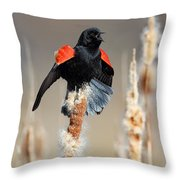 Redwing Blackbird Displaying Throw Pillow
