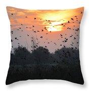 Redwing Sunset Throw Pillow