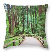 Redwood Forest Of Muir Woods National Monument In San Francisco. Throw Pillow by Jamie Pham