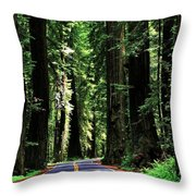 Redwood Highway Throw Pillow