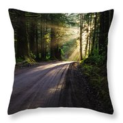 Redwood Magic Throw Pillow