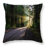 Redwood National Park Morning Throw Pillow