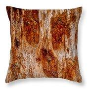 Redwood Spirit Throw Pillow