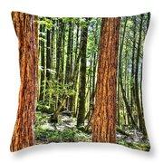Redwoods 2 Big Basin Throw Pillow
