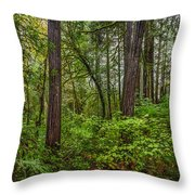 Redwoods 2 Throw Pillow