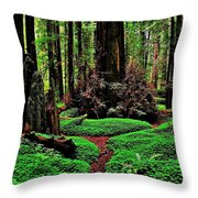 Redwoods Wonderland Throw Pillow by Benjamin Yeager