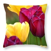 Redyellowtulips6728 Throw Pillow