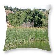 Reed Shore Throw Pillow