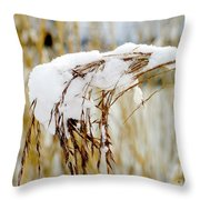Reed With Snow Throw Pillow