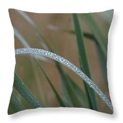 Reeds And Rain Throw Pillow