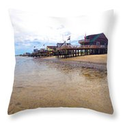 Reeds Beach Panorama - New Jersey Throw Pillow