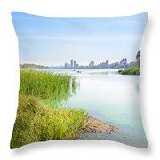 Reeds Close To The Shore Throw Pillow