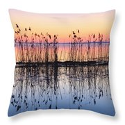 Reeds Reflected In Water At Dusk Ile Throw Pillow