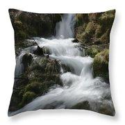 Reeds Springs Falls Throw Pillow