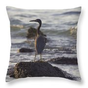 Reef Egret Throw Pillow