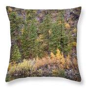 Reflect Autumn Throw Pillow