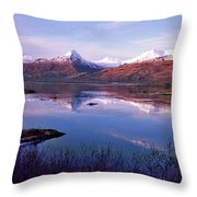 Reflect What I Am Throw Pillow