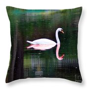 Reflect Yourself Throw Pillow