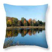 Reflected Color Throw Pillow