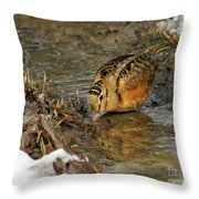 Reflected Eye Woodcock Throw Pillow